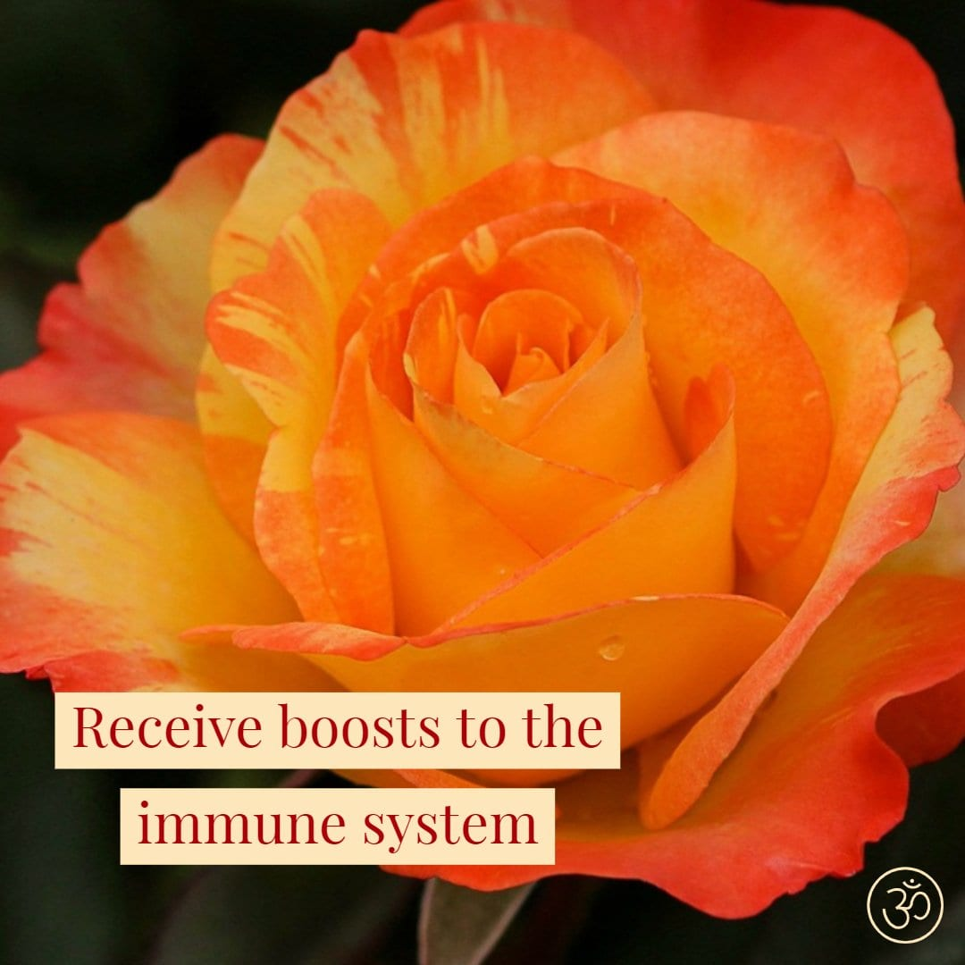 Receive Boosts to the Immune System