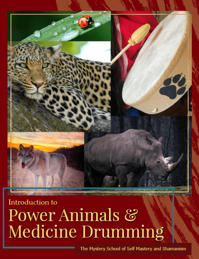 Cover Photo for The Power Animal & Medicine Drumming eBook